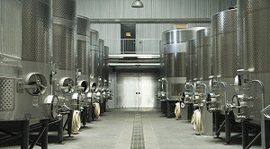 Modern winery fermenting facility